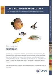 Aquariumvissen dierenwinkel breda avri bloem en for Bloemist breda