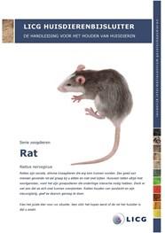 dierenbijsluiter rat